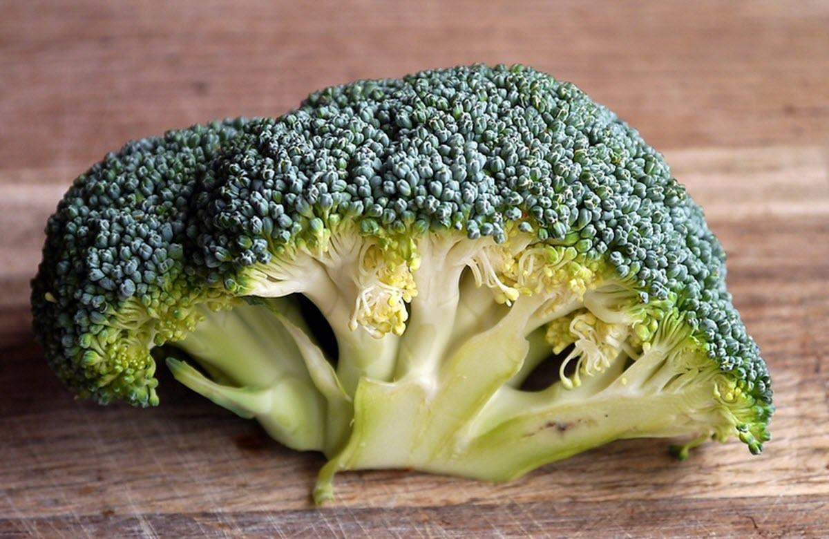 odla egen broccoli