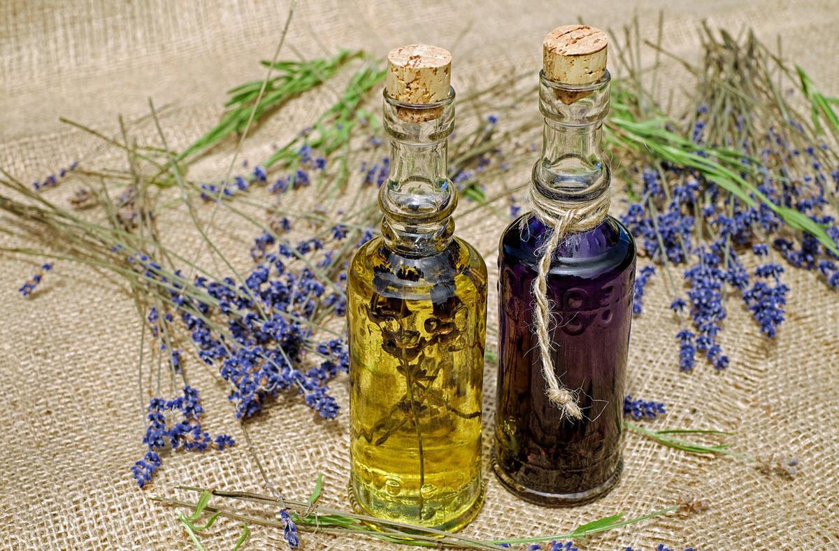 lavendel olja md lavendel blommor